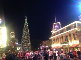 Main Street USA - basically crowded at all times, but very beautiful lit up at night.